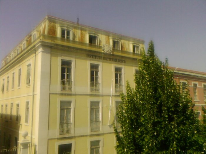 Instituto Camara Pestana0001